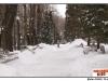 pro-image-kids_stefan-rusu-12